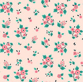 Cute Floral pattern. Royalty Free Stock Images