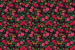 Cute Floral pattern. Stock Photo