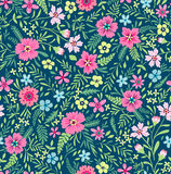 Cute Floral pattern. Royalty Free Stock Photos
