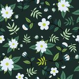 Cute Floral pattern in the small flower. Seamless vector white background Stock Photography