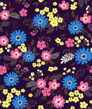 Cute Floral pattern. Vector seamless pattern. Cute pattern in small flower. Small colorful flowers. Dark violet background. Ditsy floral background. The elegant Stock Photography