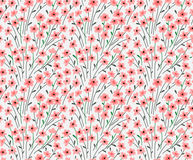 Cute Floral pattern. Royalty Free Stock Photography
