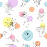 Cute floral seamless pattern. Royalty Free Stock Photo