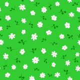 Cute floral seamless pattern with daisies and leaves. Endless print with flowers. Vector illustration vector illustration