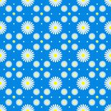 Floral Seamless Pattern with White Daisies in Blue Background stock illustration