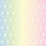 Floral Seamless Pattern of White Daisies in Gradated Pastel Colors Background vector illustration
