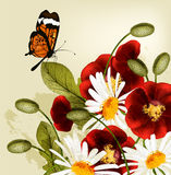 Cute flower background with red poppyes and chamomiles Royalty Free Stock Image