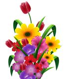 Cute Flower bouquet Royalty Free Stock Photo