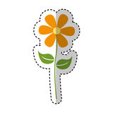 Cute flower emblem icon Stock Photo