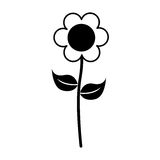 Cute flower emblem icon Royalty Free Stock Photography