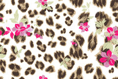 Cute flower seamless mix leopard  pattern Royalty Free Stock Images
