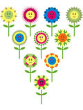 Cute flower variation Royalty Free Stock Photography