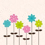 Cute flowers Stock Image