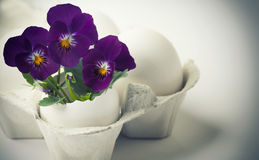 Cute flowers in egg shells for Easter Royalty Free Stock Photos
