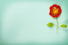 Cute flowers made of fresh organic vegetables Royalty Free Stock Image