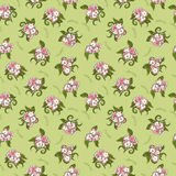 Cute flowers pattern. Spring seamless cute flowers pattern Royalty Free Stock Images