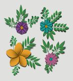 Cute flowers set icons Royalty Free Stock Photography