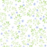 Cute flowers, wild herbs, meadow grasses. Pastel ditsy repeating pattern. Watercolour. Cute flowers, wild herbs and meadow grasses. Pastel ditsy repeating Stock Image