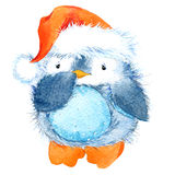 Cute fluffy bird penguin. Watercolor funny penguin. Stock Images