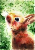 Cute fluffy brown bunny looks at a white dandelion on a green background, painted by hands with watercolor, poster, illustration,. Picture, postcard, realistic royalty free illustration