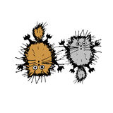 Cute fluffy cats, sketch for your design Royalty Free Stock Images