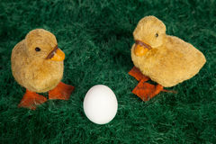 Cute fluffy Easter ducklings Royalty Free Stock Photo