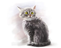 Cute fluffy pet kitten, digital paint stock illustration