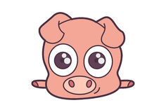Cute Fluffy Pig. Stock Photography