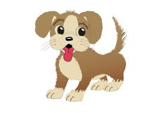 Cute fluffy puppy royalty free stock image
