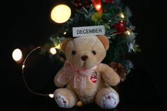 Cute fluffy teddy bear with Mini Christmas tree decoration  on dark black background. Year end, Christmas and holiday conceptual image Stock Image