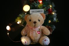 Cute fluffy teddy bear with Mini Christmas tree decoration  on dark black background. Year end, Christmas and holiday conceptual image Stock Images