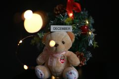Cute fluffy teddy bear with Mini Christmas tree decoration  on dark black background. Year end, Christmas and holiday conceptual image Royalty Free Stock Images