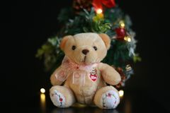 Cute fluffy teddy bear with Mini Christmas tree decoration  on dark black background. Year end, Christmas and holiday conceptual image Stock Photos