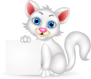 Cute  fluffy white Cat cartoon with blank sign Royalty Free Stock Photos