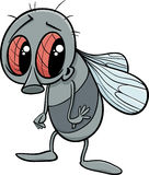 Cute fly cartoon illustration Stock Images