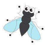 Cute fly cartoon. Stock Photography
