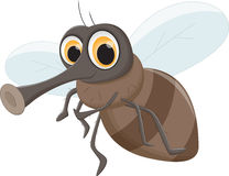Cute Fly cartoon. Vector illustration of cute Fly cartoon isolated on white Royalty Free Stock Images