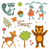 Cute forest animals colorful collection. Vector illustration Royalty Free Stock Photos