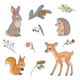 Cute forest animals Stock Photo