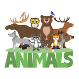 Cute forest animals. Royalty Free Stock Images