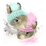 Cute forest bunny T-shirt graphics, watercolor rabbit Stock Photography