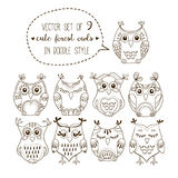 Cute forest owls vector illustration set. Collection of 9 lovely birds in doodle style for coloring. Isolated sketch design elements of owl characters Stock Image