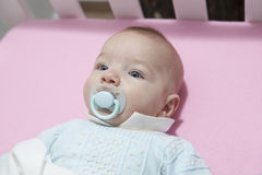 Cute four month baby boy lying in cot with pacifier Royalty Free Stock Photo