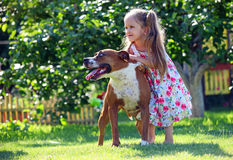 Cute four-year old girl playing with a dog Royalty Free Stock Images