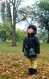 Cute four years child in waterproof coat and boots is looking at falling leaves Royalty Free Stock Image