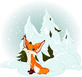 Cute fox against a snowy forest Stock Photos