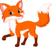 Cute fox cartoon. Illustration of cute fox cartoon Stock Photos