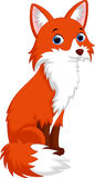 Cute fox cartoon Stock Images