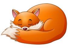 Cute fox cartoon sleeps. Illustration of Cute fox cartoon sleeps Royalty Free Stock Images