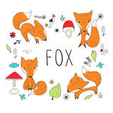 Cute fox collection. Royalty Free Stock Photography